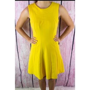 Ted Baker Fit & Flare Yellow Dress